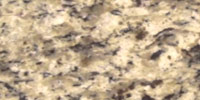 Amber-Yellow Palmetto Granite