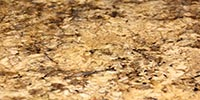 Autumn Leaf - granite countertops Stone City LLC