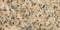 Caricoca-Gold Palmetto Granite