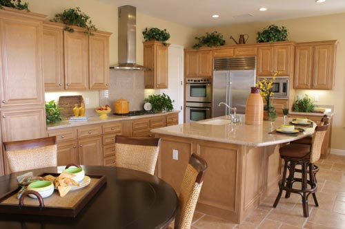 GraniteKitchenCountertopTransitional